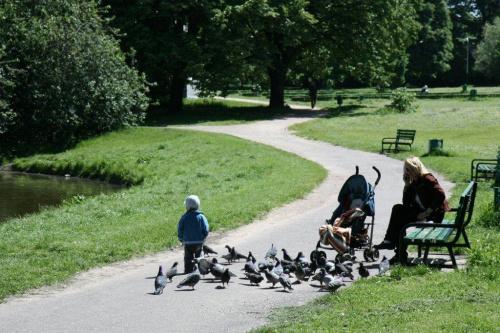 W parku #Miasto