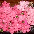 #KwiatyZBibuły #bibuła #krepina #dekoracje #hobby #KompozycjeKwiatowe #MojePrace #pomysły #Agnieszka #pasja #RobótkiRęczne #rękodzieło #moje