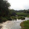 Potok Służewiecki #potok #woda #widok