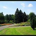 #park #widok #widoczek #lato #trawa