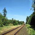 |20.08.09| SA106-019 jako pociąg 1126 do Chełmży. W oddali Dąbrowa Chełmińska co będzie widać na kolejnych zdjęciach. #osobowy #pkp #Dąbrowa_Chełmińska #Bydgoszcz #Chełmża #linia