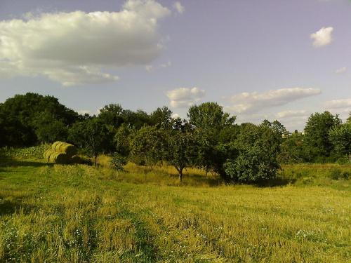 #krajobrazy #pola #łąki