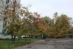 http://images49.fotosik.pl/215/2d828946d68dda57m.jpg