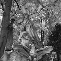 Cmentarz, włocławek, groby, pomniki #Cmentarz #włocławek #groby #pomniki