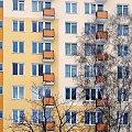1szy Stycznia #Warszawa #blok #brzoza