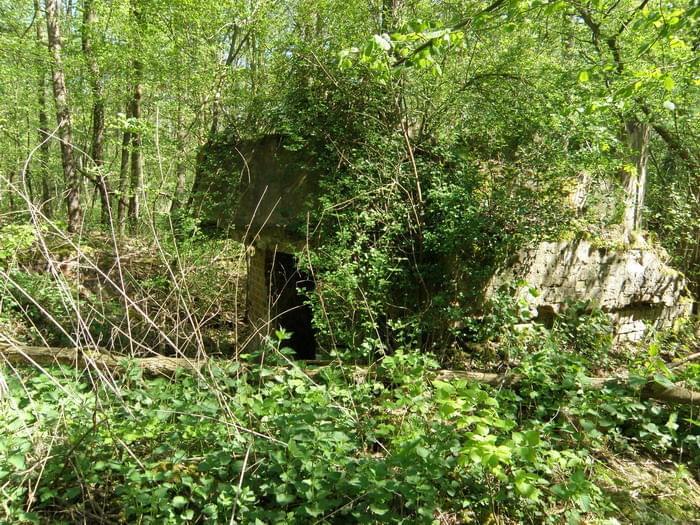 Ruiny młyna papierniczego w Rosiejewie- Papier und Zelullosenfabrik  Pulverkrug 70b728fb3b236341