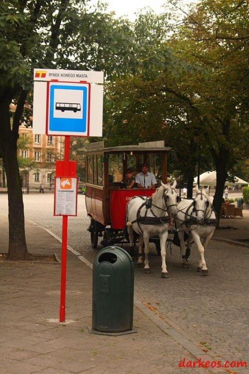 Nowa komunikacja zbiorowa w Warszawie #Konie #Warszawa #KomunikacjaMiejska #StareMiasto #starówka #event #bryczka #zaprzęg