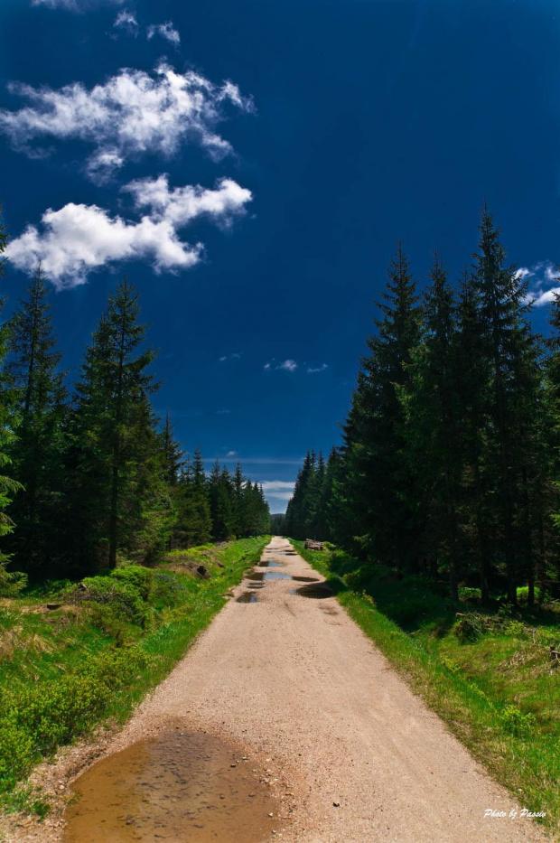 #góry #droga #las #niebo #chmury #nikon #tamron #passiv #airking