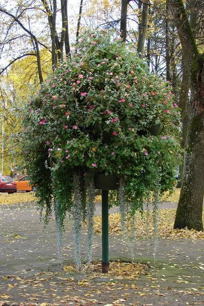#DruskiennikiNadNiemnem #Niemen #jesień #akvapark