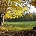 Jesień w parku w Strzelcach Opolskich #park #StrzelceOpolskie