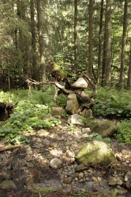 Leśny ludek #las