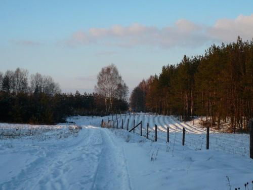 Zima, 20.02.2009 #zima