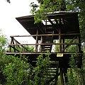 POLESIE - Sobiborski Park Krajobrazowy, punkt obserwacyjny w rezerwacie Żółwiowe Błota #Polesie #SobiborskiParkKrajobrazowy